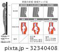 骨格 イメージ図 骨盤矯正のイラスト 32340408