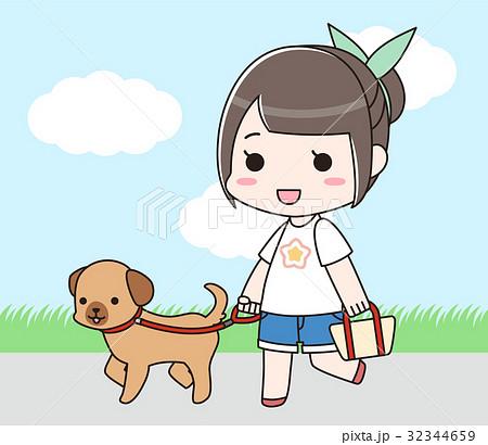 犬の散歩をする女性 32344659