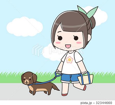 小型犬の散歩をする女性 32344660