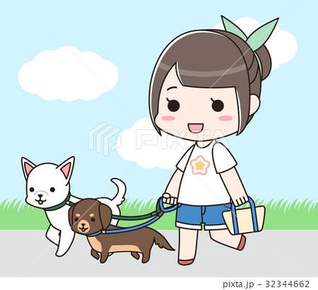 2頭の犬の散歩をする女性 32344662