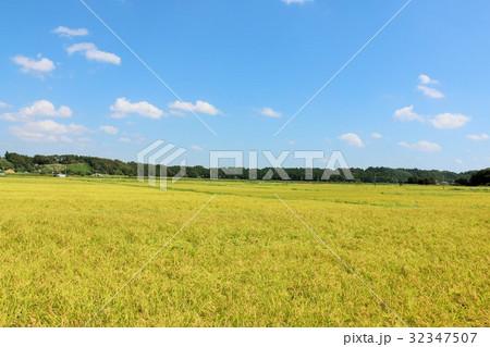 秋の青空と田園風景 32347507