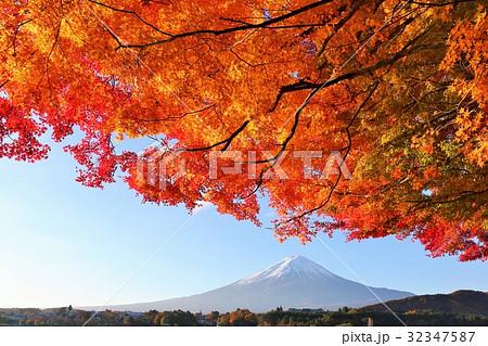 富士山と紅葉 32347587