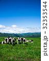 牧場 放牧 牛の写真 32353544