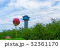 古代蓮の里 蓮 花の写真 32361170