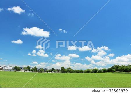 青空と新緑の公園広場 32362970