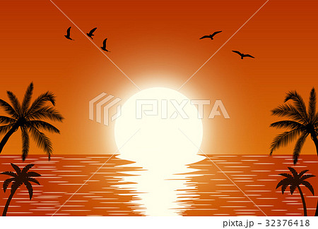 Silhouette palm tree on beach 32376418