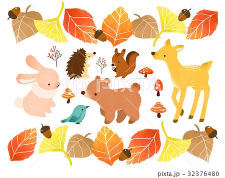 秋の動物イラスト 32376480