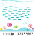 かわいい魚の群れと海底の風景 32377667