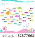 熱帯魚の群れと海底の風景 32377668