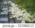 自然 天然 ナチュラルの写真 32386212