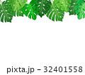 南国の葉っぱ ボタニカル フレーム(透過) 32401558