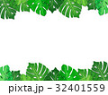 南国の葉っぱ ボタニカル フレーム(透過) 32401559