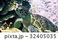 海 写真 32405035