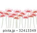 彼岸花 32413349