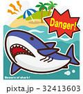 サメのいる海 ホオジロザメ 32413603