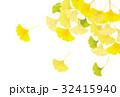 銀杏 紅葉 秋のイラスト 32415940