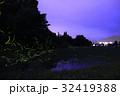 蛍 ホタル 小国町の写真 32419388