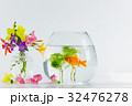 金魚と夏の花 32476278