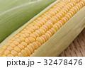 トウモロコシ 32478476