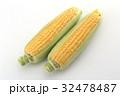 トウモロコシ 32478487