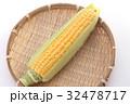 トウモロコシ 32478717