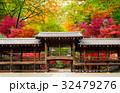 京都の紅葉 寺の廊下と色づく木々 32479276