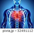 ハート ハートマーク 心臓のイラスト 32491112