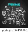 チョーク 白亜 動物のイラスト 32491966