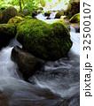 岩と苔 32500107