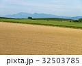 美瑛 畑 風景の写真 32503785