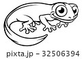 Newt or Salamander Cartoon Character 32506394