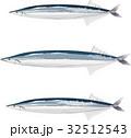 秋刀魚 さんま 魚のイラスト 32512543