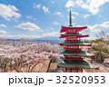 仏塔 桜 サクラの写真 32520953