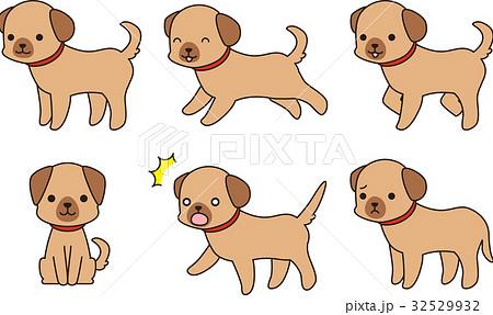 茶色い犬のポーズ集 32529932