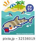 サメのいる海 ドチザメ(青罫) 32536019