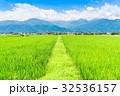 安曇野 田園風景 水田の写真 32536157
