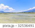 台湾 池上 たんぼの写真 32536491