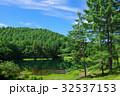 御射鹿池 池 新緑の写真 32537153