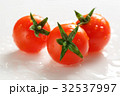 Ripe tomatoes with green twig 32537997