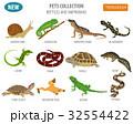 Pet reptiles and amphibians icon set flat style  32554422