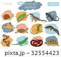Pet reptiles and amphibians icon set flat style  32554423