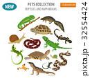 Pet reptiles and amphibians icon set flat style  32554424
