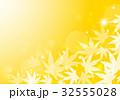 葉 紅葉 楓のイラスト 32555028