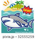 サメのいる海 シロワニ(青罫) 32555259
