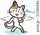 ベクター 猫 ミケのイラスト 32566880