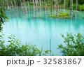 美瑛 青い池 水面 32583867