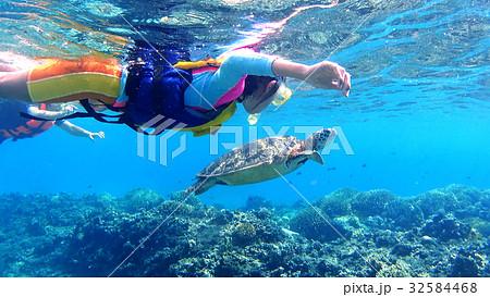 沖縄 渡嘉敷島の水中撮影 シュノーケリングでウミガメを観察する小学生と母親 32584468