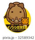 猪 親子 出没注意のイラスト 32589342
