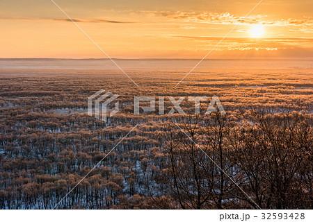 釧路湿原の冬の朝 32593428