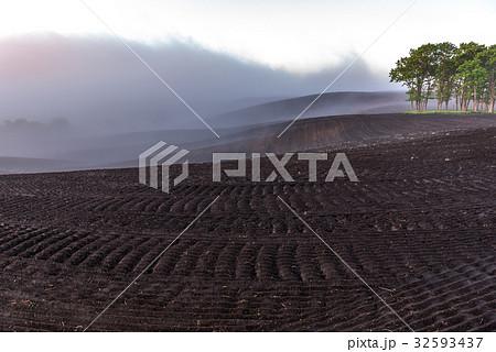 畑と霧2 32593437